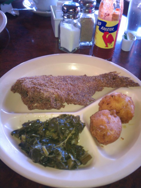 fried catfish plate picture