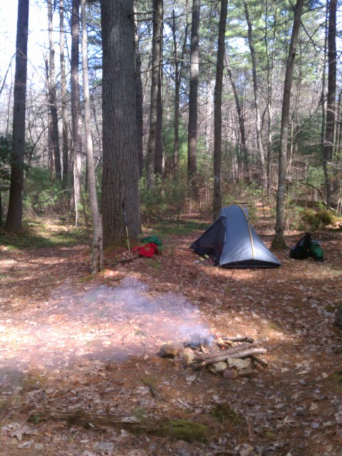 this was my campsite one evening along dismal creek