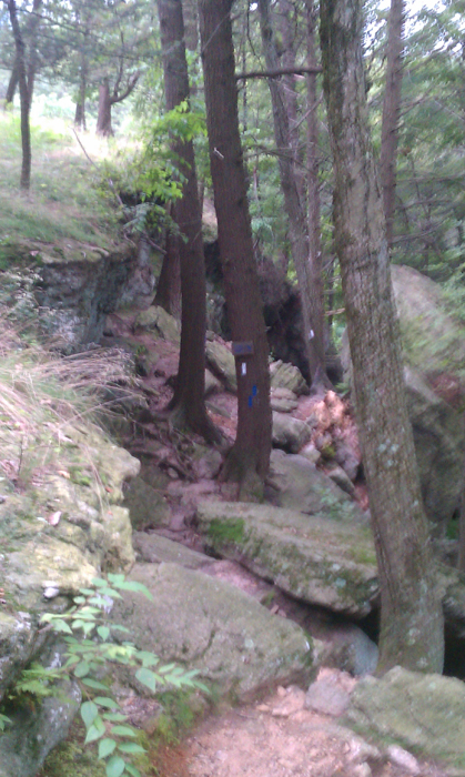 appalachian trail bear harriman parks 48