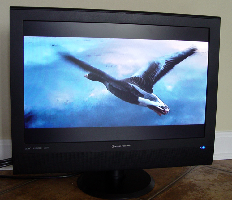 TV with FLYING GOOSE for sale, buy it now!
